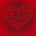Rose heart roses in the shape of a on a red background Royalty Free Stock Image