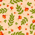 Rose hip seamless beige pattern. Stock Photos