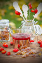 Rose hip tea in the garden on table Stock Image
