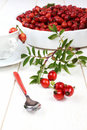 Rose hip for useful tea on a white background in a white bowl Royalty Free Stock Photography