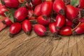 Rose hips fresh close up Royalty Free Stock Photography