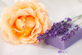 Rose and lavender soap bar Stock Image