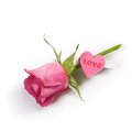Rose with Love Royalty Free Stock Images
