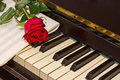 Rose with notes paper on piano vintage Royalty Free Stock Photo