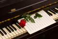 Rose with notes paper on piano Royalty Free Stock Photo