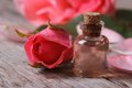 Rose oil in a glass bottle and pink flowers close up Royalty Free Stock Photo