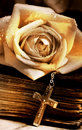 Rose old bible and cross Royalty Free Stock Photos