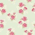 Rose pattern 3 Royalty Free Stock Photo