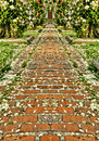 Rose pedals on brick walkway Royalty Free Stock Photos
