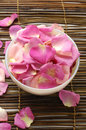 Rose petal Stock Photography