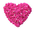 Rose Petal Heart Stock Photography