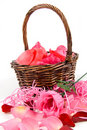 Rose petals in a bucket Royalty Free Stock Photos