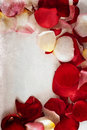 Rose Petals Grunge Background Royalty Free Stock Photography