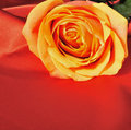 Rose on red silk Royalty Free Stock Photos