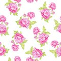 Rose seamless background vector illustration Royalty Free Stock Photography