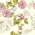 Rose seamless pattern Royalty Free Stock Photo