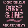Rose Shine typeface. Pink gold glittering font. Isolated ornate english alphabet