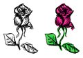 Rose sketches vector of colorful and monochrome variants Stock Image