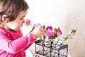 Rose smell little girl is smelling the roses close up face Stock Photography