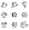Rose vector illustration of outline set Royalty Free Stock Photography