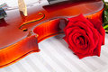 Rose violin red roses and musical notebook Stock Photography
