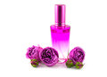 Rose water fragrance bottle filled with and three buds of lilac fresh roses on white background isolated Stock Image