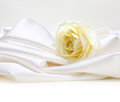 Rose on white silk Royalty Free Stock Photo