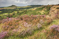 Roseberry Topping viewed from Cliff Ridge Royalty Free Stock Photo