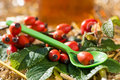 Rosehip honey with fresh rose hips Royalty Free Stock Image