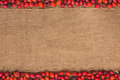 Rosehip lying on sackcloth with space for text Royalty Free Stock Image