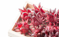 Roselle fruit in wood box isolated Royalty Free Stock Photo