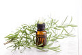 Rosemary essential oil bottle of beauty treatment Stock Photography