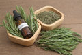 Rosemary herb and aromatherapy  essential oil Royalty Free Stock Photo