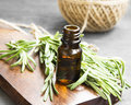 Rosemary Herb Essential Oil Bottle Royalty Free Stock Photo