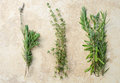 Rosemary lavender oregano sur le fond bronzage Photo stock
