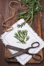 Rosemary on a light napkin next to the old scissors Stock Photo
