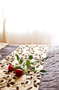 Roses on bed a pair of a in a bedroom Stock Photography