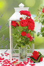 Roses and butterflies bouquet of red in a lantern with tropical decorations Stock Image