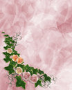 Roses Floral ivy Border Invitation Stock Photography