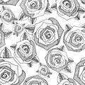 Roses. Hand drawing. Vector seamless background