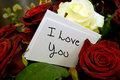 Roses with i love you card Royalty Free Stock Images