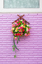 Roses on purple brick wall Royalty Free Stock Photo