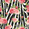Roses seamless pattern on zebra background. Animal abstract print. Royalty Free Stock Photo