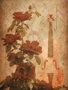 Roses and violin Royalty Free Stock Photo