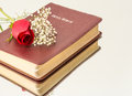 Roses,Wood and the Word of God Royalty Free Stock Photo
