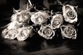 Roses wooden table black white Stock Photos