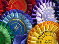 Rosettes Royalty Free Stock Image