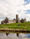Ross Errilly Priory, County Galway, Ireland Royalty Free Stock Photos