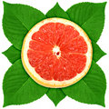 Сross section of grape-fruit with green leaf Royalty Free Stock Photo