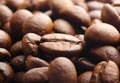 Rosted coffee bean macro Stock Photos